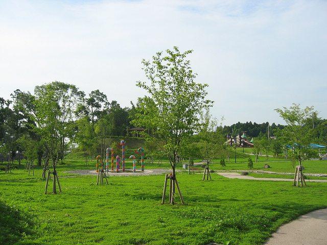 福岡堰さくら公園04